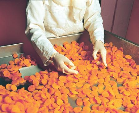 Turkish Apricot Crop Survey 2016