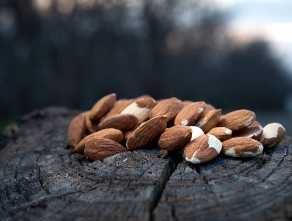 May Almonds shipment report