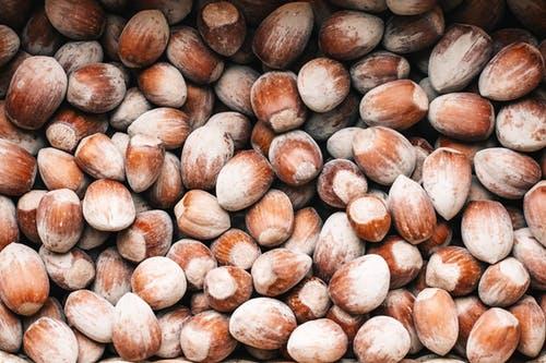 Turkish Hazelnut Market Update