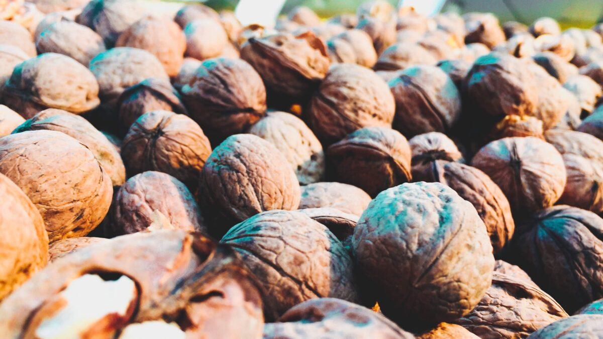 Walnut Market Update October 2019