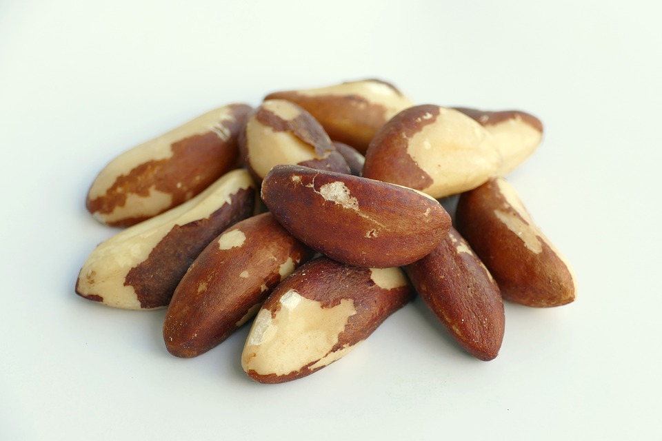 TREE NUTS MARKET REPORT - BRAZIL NUT