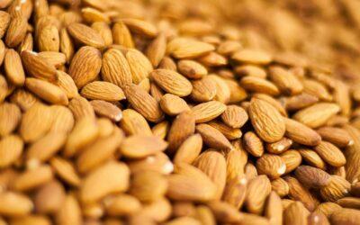 Californian Almonds Shipments up 16% on last year!!