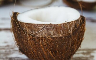 Desiccated Coconut Market Report