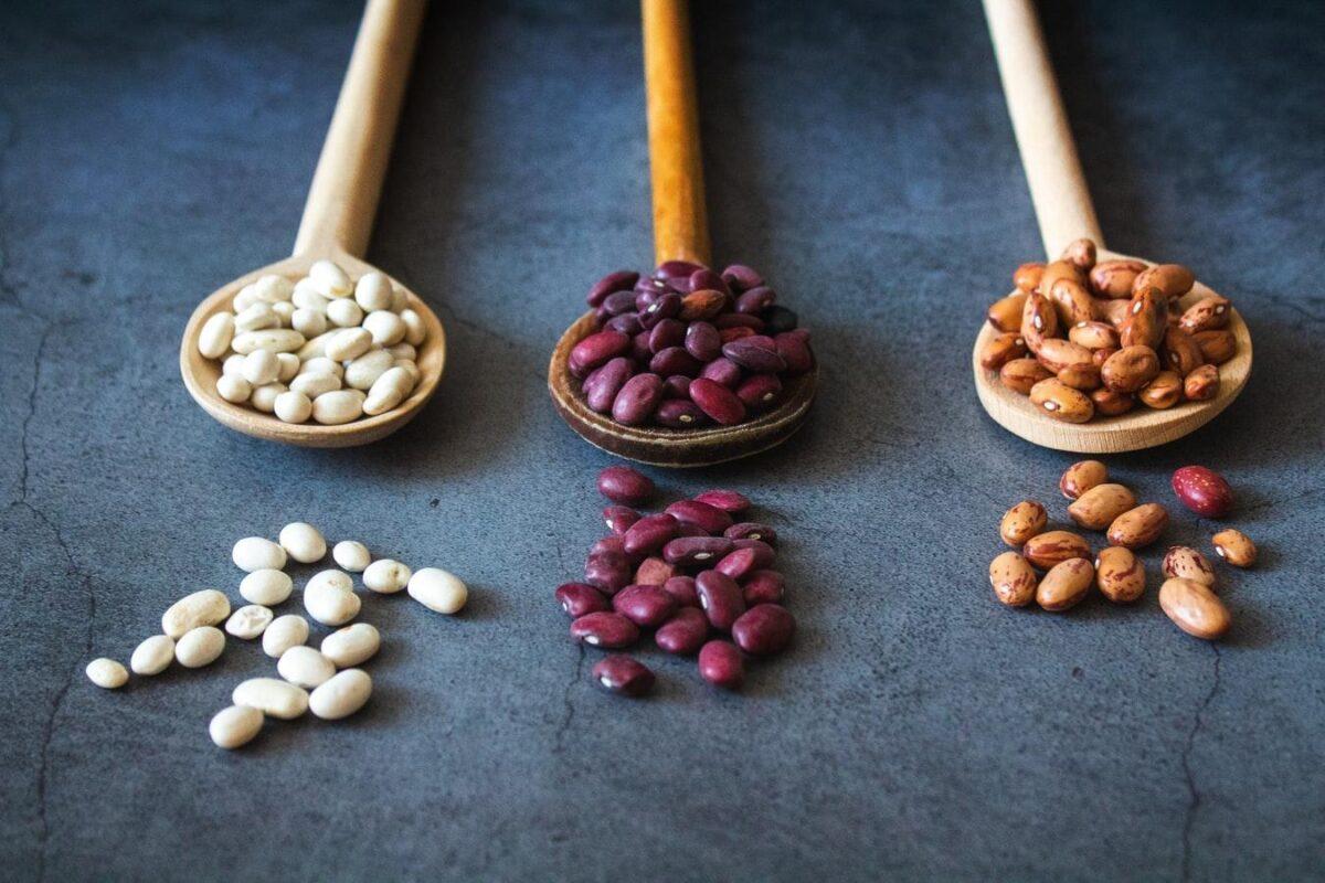 Latest Pulses & Lentils Market Review - April - Part 2