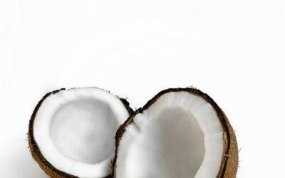 Coconut Market Update