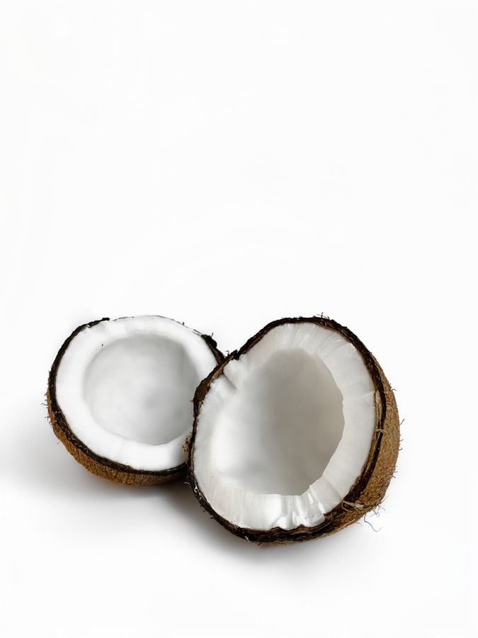 Coconut Market Update
