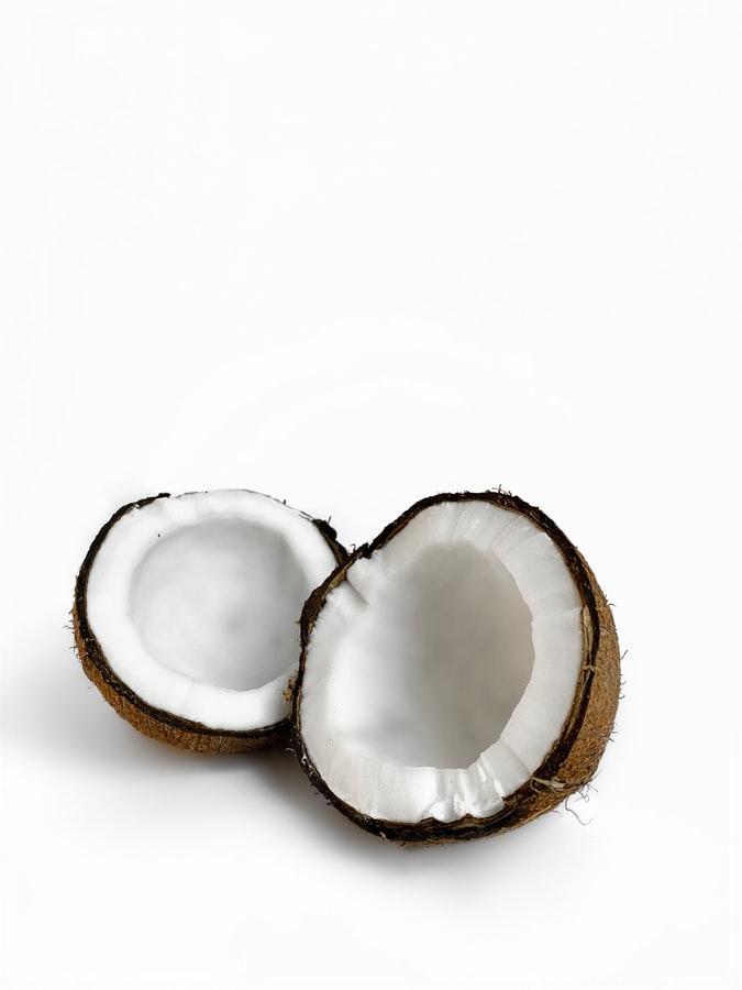 Desiccated coconut market update