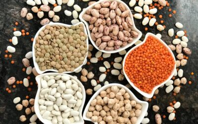 Latest Pulses & Lentils Market Review - April - Part 1